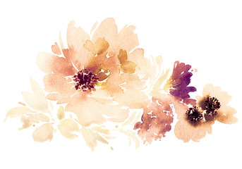 Flowers watercolor illustration