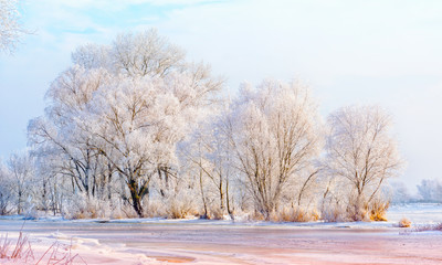 Landscape with trees, frozen water, ice and snow on the Dnieper river in Kiev, Ukraine, during winter