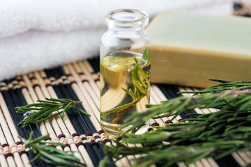 essential oil with rosemary herbs  on dark background,  for beauty and spa.