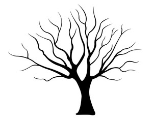 illustration of a tree isolated on white