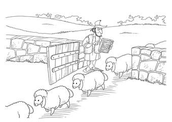 Shepherd said his flock of sheep