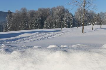 alpen, skilanglauf, österreich, tourismus, langlauf Loipe.