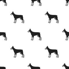 Doberman vector icon in black style for web