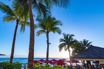 ハワイの海辺バカンス