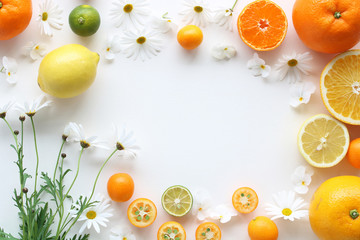 Frame of various citrus fruits and  marguerite flower,top view