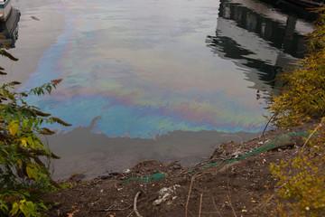 oil slick on lake Union
