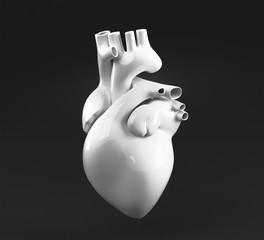 Cuore anatomico umano bianco su fondo nero