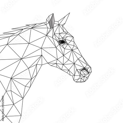 Cavallo Geometrico Testa Di Cavallo Vista Di Lato Design Lineare