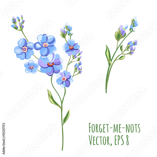 Set of blue flowers and buds forget me not stem and leaves on set of blue flowers and buds forget me not stem and leaves ccuart Image collections