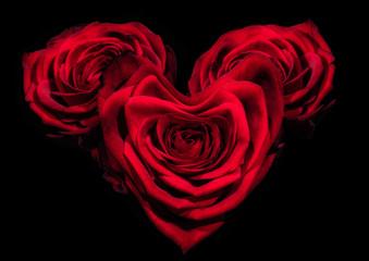 Rosen als Herz geformt