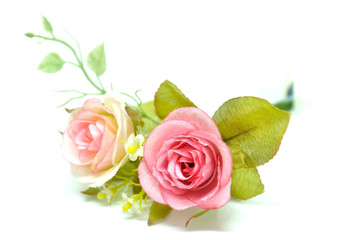 Vintage pink roses decorate on white background.