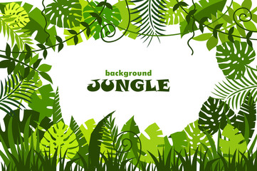 decorative tropical jungle background. vector illustration