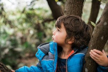 Portrait of boy sitting on branch of tree, profile