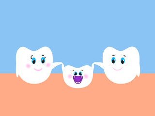 Baby tooth and the molars. Family. Vector illustration. Flat design
