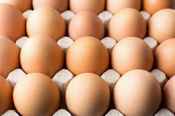 Raw chicken eggs in cardboard box