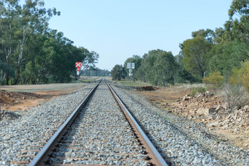 a straight stretch of railway line with a rail crossing and tree