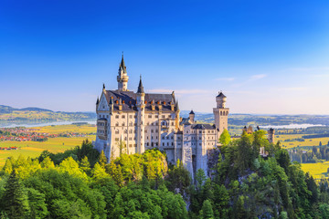 Summer view of Neuschwanstein Castle, Fussen, Bavaria, Germany Wall mural