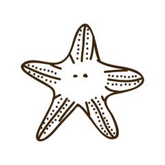silhouette starfish animal marine design vector illustration