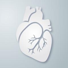 Herz-Darstellung / Querformat / Vektor