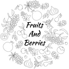 Fruits and Berries Round Set