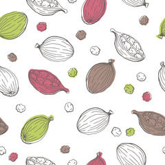 Cardamom graphic color seamless pattern sketch illustration vector