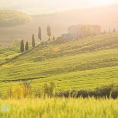 Tuscany, springtime landscape