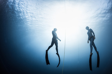 Wall Mural - Two free divers, man and woman, ascending from the depth