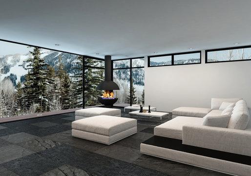 Spacious luxury living room interior in winter