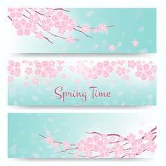 Wall Mural - Blossom sakura or cherry cards. Spring  flowers banners
