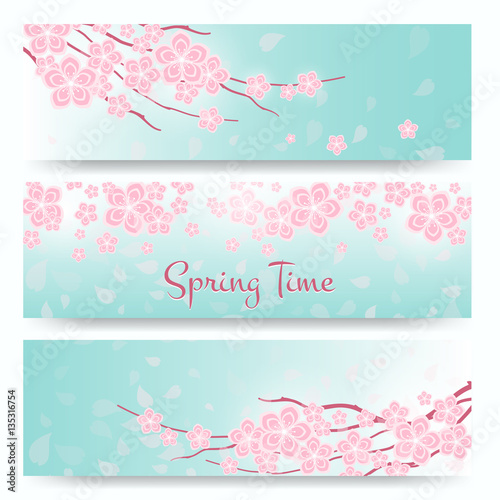 Wall mural Blossom sakura or cherry cards. Spring  flowers banners