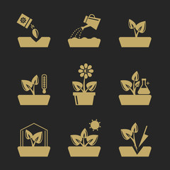 Wall Mural - Planting and seeding ground signs. Plants seeds, greenhouse flowers vector icons