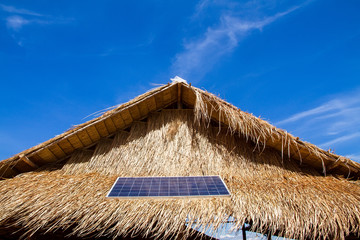 Solar panels on the roof thatched with dry leaf.Global ecology.C