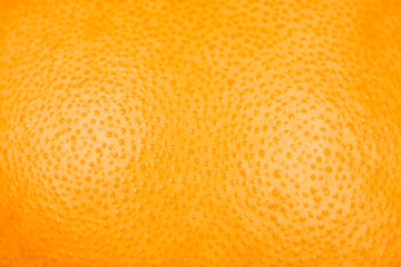 Close up of grapefruit or orange texture peel or zest..