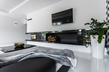 Light room with modern fireplace