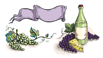 Watercolor wine grapes ribbon template design in graphic style hand-drawn vector illustration.