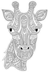 Giraffe portrait vector graphic illustration