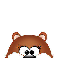 Groundhog day. Marmot on white background