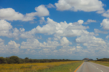 South African road through the savannas and deserts with marking