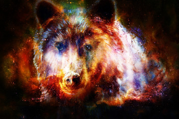 head of mighty brown bear in space, oil painting on canvas and graphic collage. Eye contact.