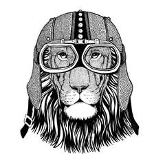 Wild cat Wild lion in motorcycle helmet with glasses