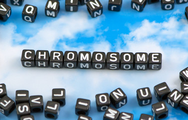 The word chromosome on the sky background