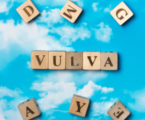 The word vulva on the sky background