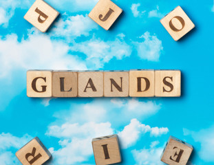 The word Glands on the sky background