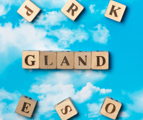 The word Gland on the sky background