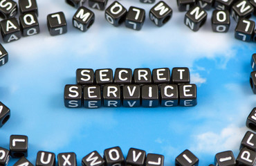 The word secret service on the sky background