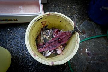 Abfalleimer auf dem Fischmarkt in Tokyo