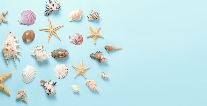 Plenty of different seashells on a blue background. Seaside themed background for travel agency template advertising or postcard. Top view vintage toned still life.
