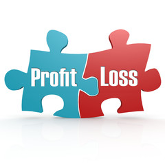 Blue and red with profit and loss puzzle