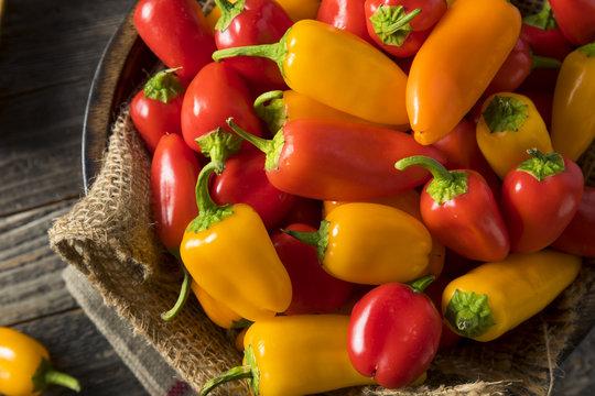 Raw Organic Mini Sweet Peppers