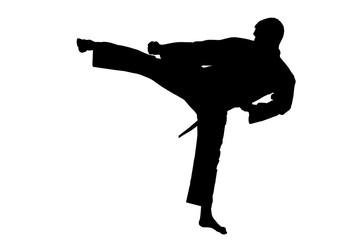 Sport Silhouette,  Karate Kick.
